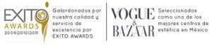 logos exito awards y vogue